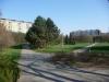 pohled na park